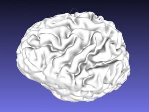 BrainModel1