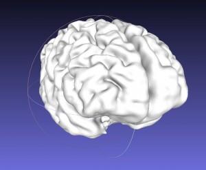 BrainModel2